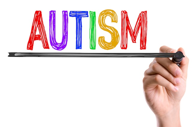 Autism and memory